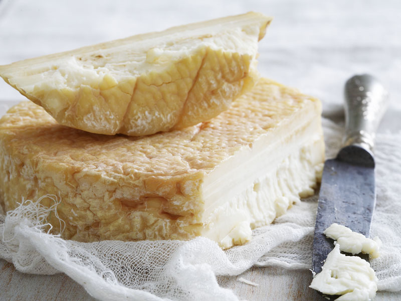 Cheese 9