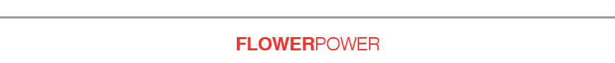 08-flower-power